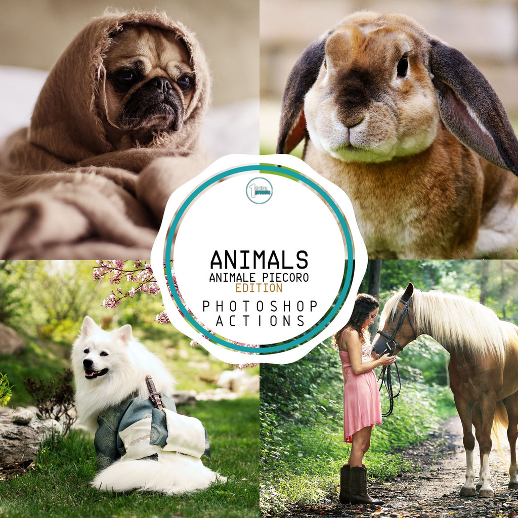 Animals - 25 Photoshop Actions