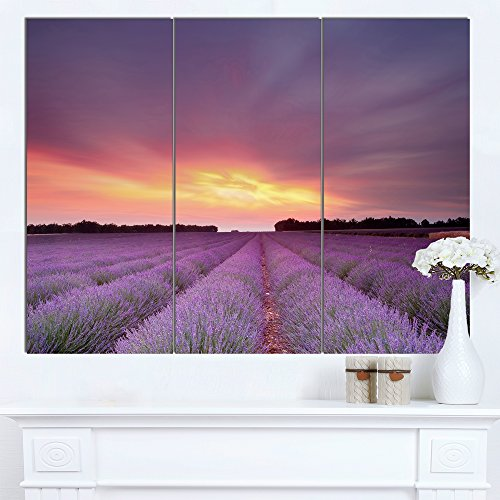 Beautiful Sunset over Lavender Rows Landscape Canvas Wall Art