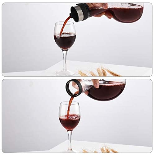Wine decanter bottle up
