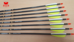 Easton ACC Arrows with EP Vanes x12