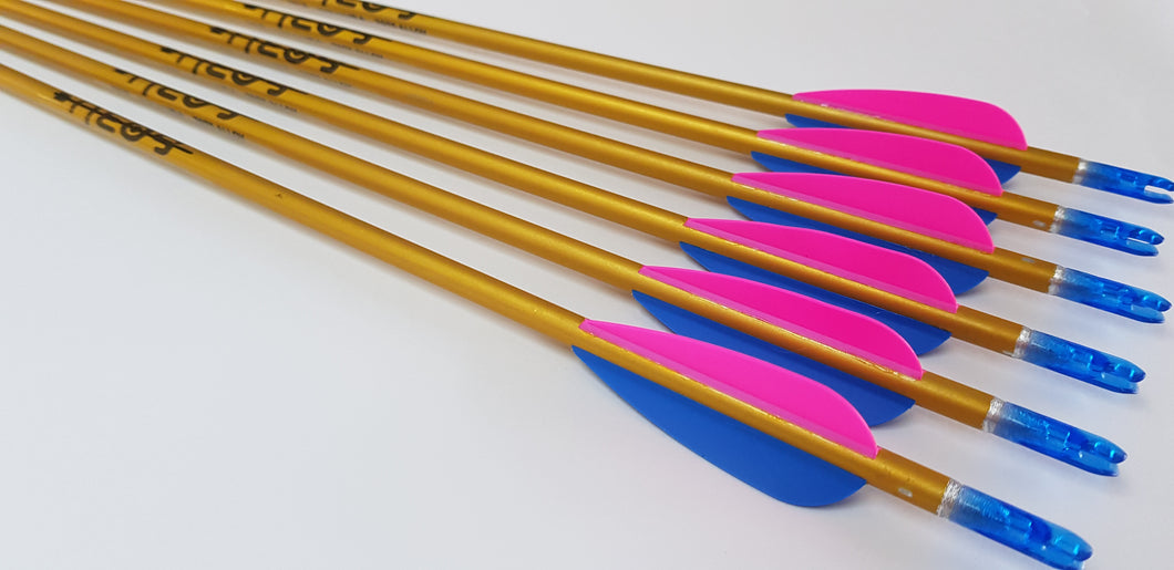 Easton Neos Arrows x6