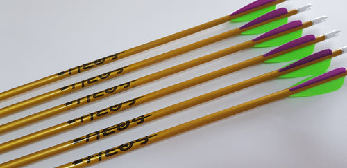 Easton Neos Arrows x8
