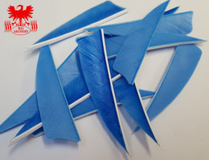 "Gateway 3"" Shield Feathers"