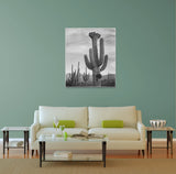 Ansel Adams Cactus In Saguaro National Monument II Canvas Wall Art