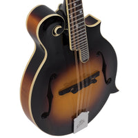 Loar Performer Mandolin, F-Style, All Solid Hand Carved LM-520 - Harbor Music