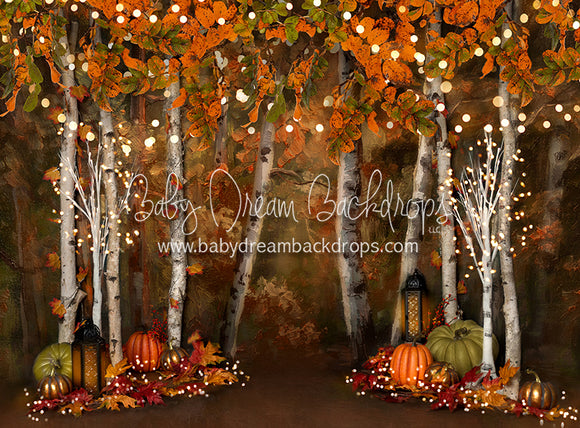 Autumn Illumination 60x80