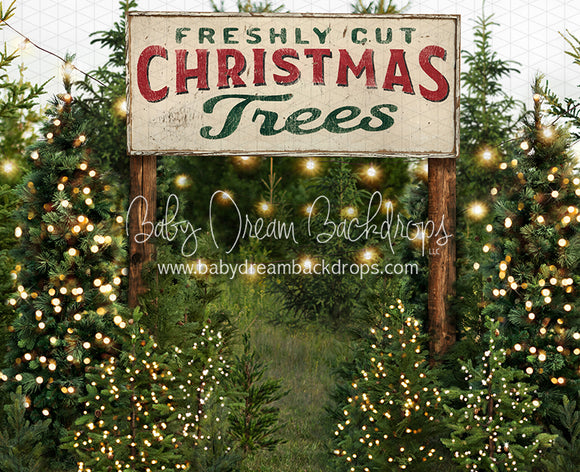 Backyard Tree Farm (String Lights + Extra Lights + Sign)