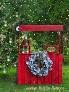 Merry And Bright Baby Dream Backdrops