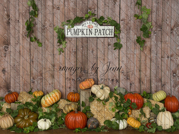 Colorful Pumpkin Patch