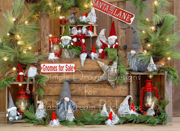 Gnomes for Sale Wood