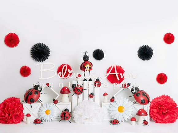 Lady Bug Celebration