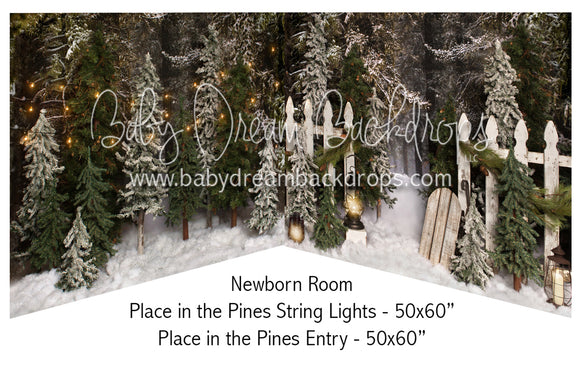 Place in the Pines String Lights and Entry Newborn Bundle