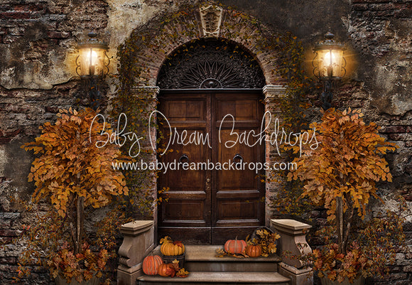 Old City Door Autumn