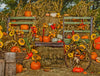 Pumpkin Patch Painted 60hx80w CS