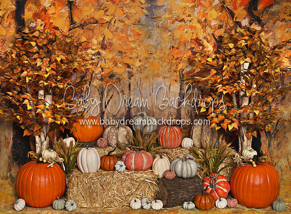 Pumpkin Perfect - 60Hx80W - JA