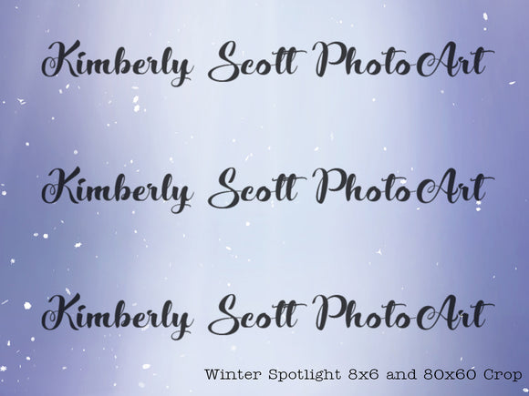 Winter Spotlight