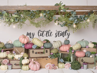 Girly Pumpkins 60hx80w MLS