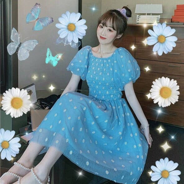 Daisy Embroidered Tulle Fairy Summer Dress