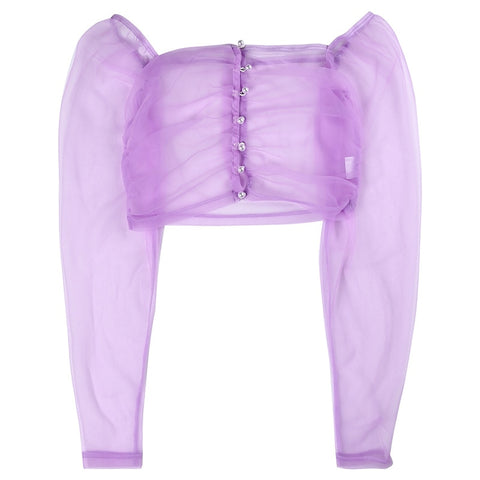 Purple Sheer 90s Aesthetic Mesh Tulle Long Sleeve Crop Top
