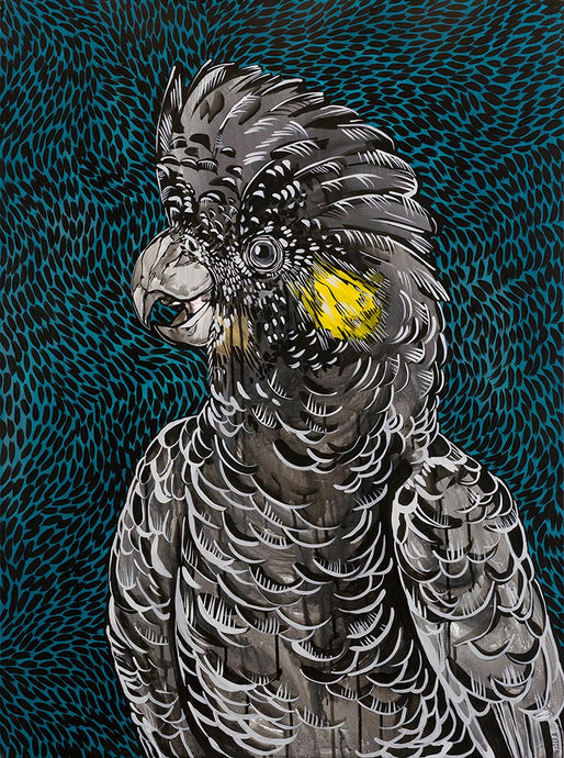 Print - Black Cockatoo