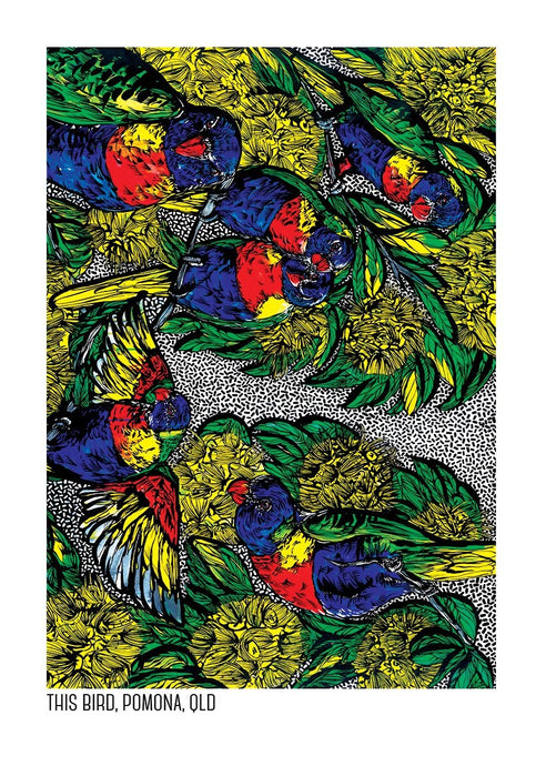 Tea Towel - Lorikeets & Golden Penda