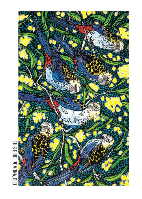 Tea Towel - Pale Headed Rosellas