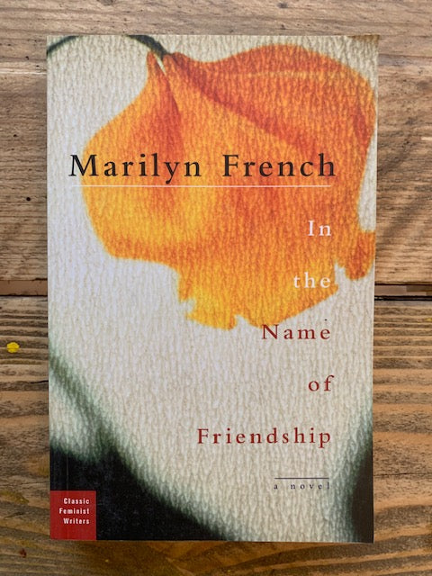 In The Name Of Friendship : A Novel