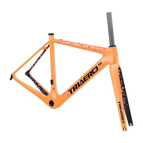 Lightweight Road Frame A2 - Triaero