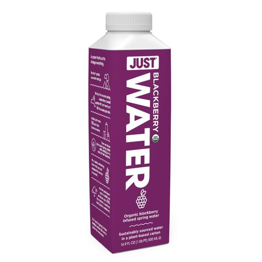 JUST Water - 100% Organic Blackberry Infused, 16.9 fl oz
