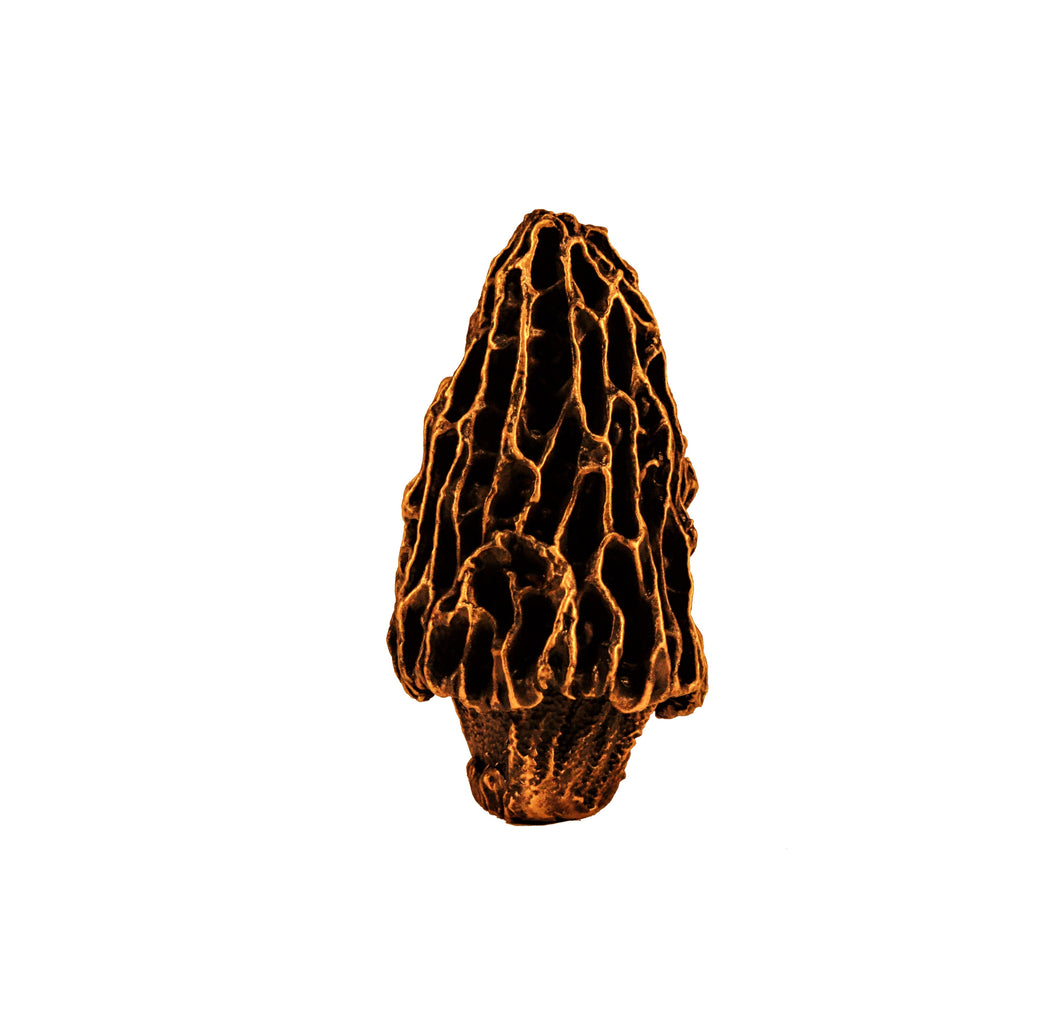 Finial Morel Mushroom - Traditional | Timber Bronze | Oregon