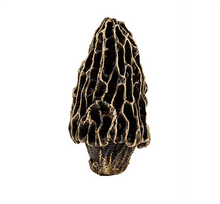 Load image into Gallery viewer, Morel Mushroom Knob | Timber Bronze | Oregon