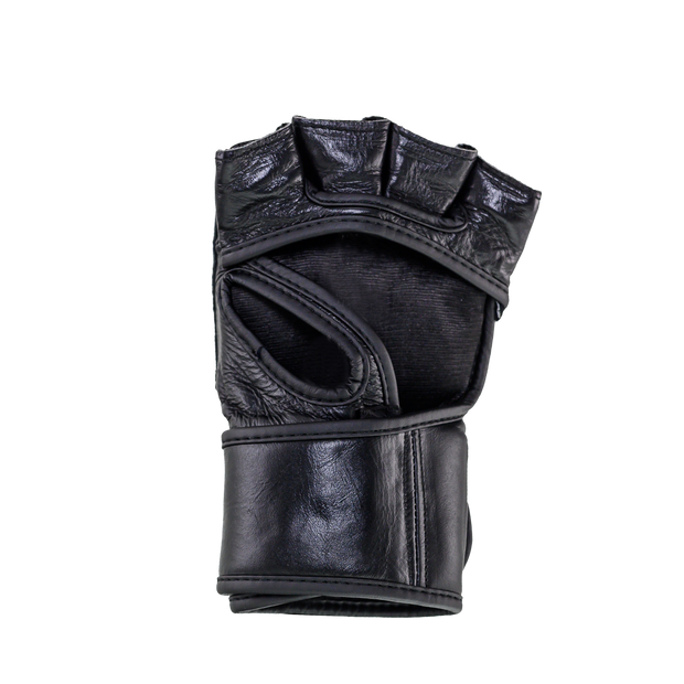 Windy MMA Gloves - Black - Windy Fight Gear