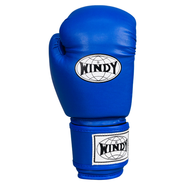 Kids Boxing Gloves - Blue - Windy Fight Gear