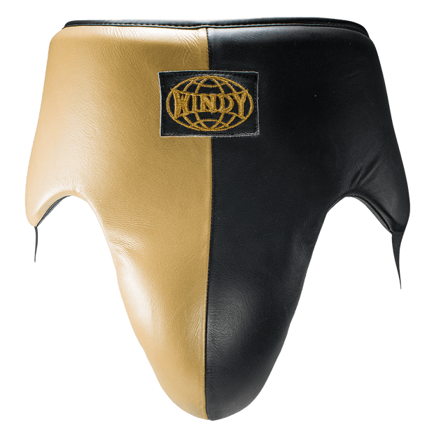 Black & Gold Groin Guard - Pro Boxing Series - Windy Fight Gear