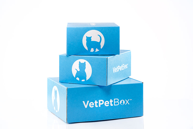 VetPet Box x CD -  How to Live Your Best 9 Lives