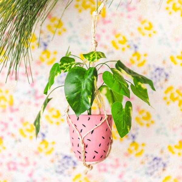 Pink Hanging Plant Ornament