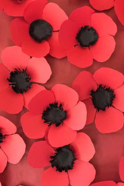 Paper Poppy Pdf Template The House That Lars Built