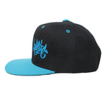 The Black/Teal Tag Logo Snapback Hat - concreteaddicts