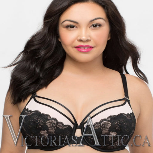 Curvy Couture Tulip Strappy Lace Push Up