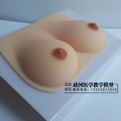 Breast model teaching equipment