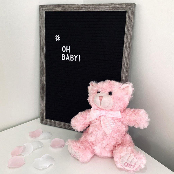 Georgie Teddy Bear Pink