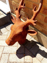 Load image into Gallery viewer, Life Sized Cast Iron Stag Head - The Vintage Look Henely