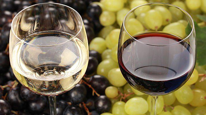 Storing Red Wine vs White Wine: Your Biggest Questions Answered