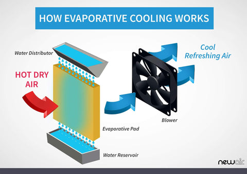 What Are Evaporative Coolers Here S Everything You Need To