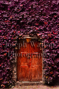 Red Mexico City Door