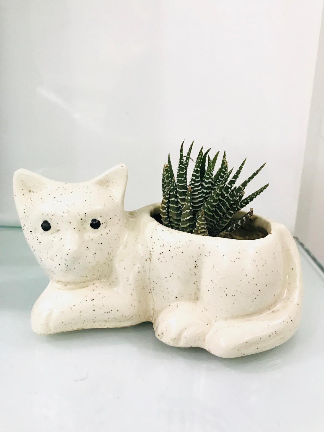 Cat Shape Planter (small) with Plant