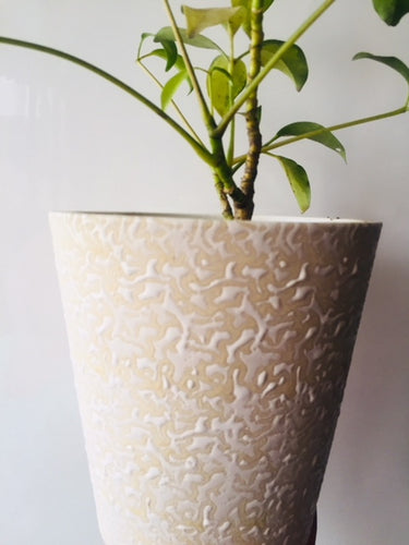 Round Base Taper Shape Pot with Texture Paint - QYARI