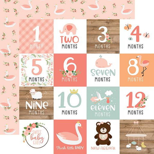 ECHO PARK 12X12  PAPER BABY GIRL MILESTONE CARDS