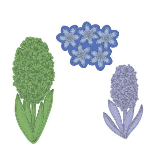HEARTFELT DIE FRAGRANT HYACINTH(Pre Order Now Shipping Late March )