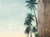KAISER 12X12 PARADISE FOUND COLLECTION  PALM TREES